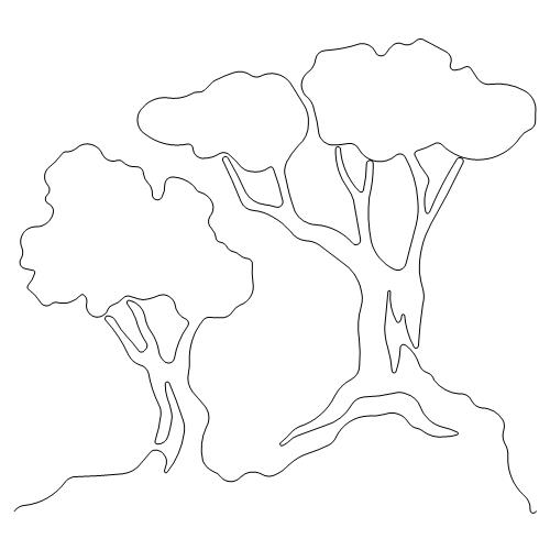 Bonsi Trees.jpg
