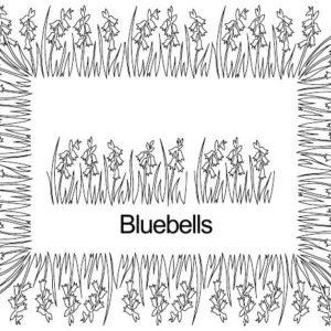 Bluebells border set.jpg