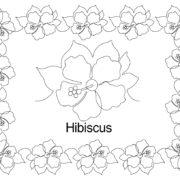 Hibiscus border set.jpg